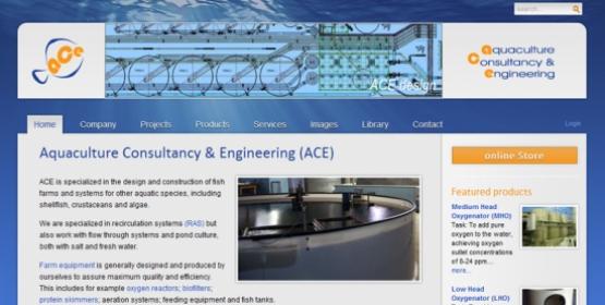 Detail van de website ACE4all