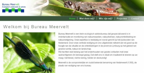 Detail van de website van Bureau Meervelt